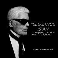 Karl Lagerfeld, l'icône de la mode est mort ce mardi 19 février 2019, Choupette est l'héritière