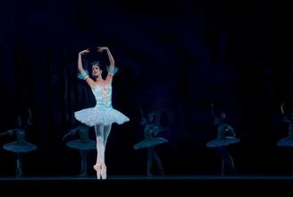 Casting danseur danseuse ballet classique pour long métrage Klapisch